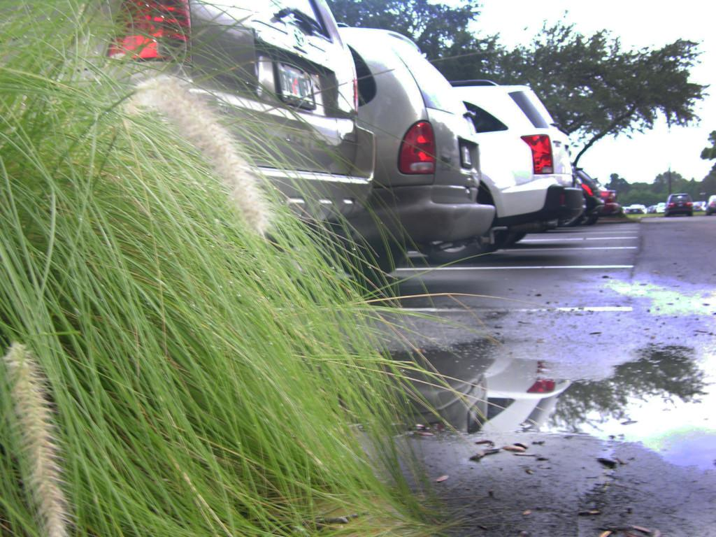 Students and parents driving irresponsibly at Osceola