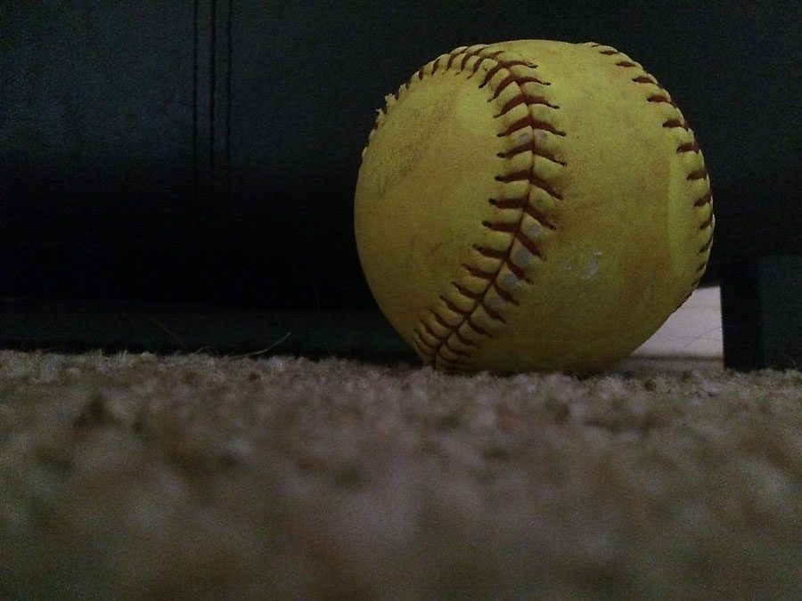 Softball+players+catching+up+with+COVID