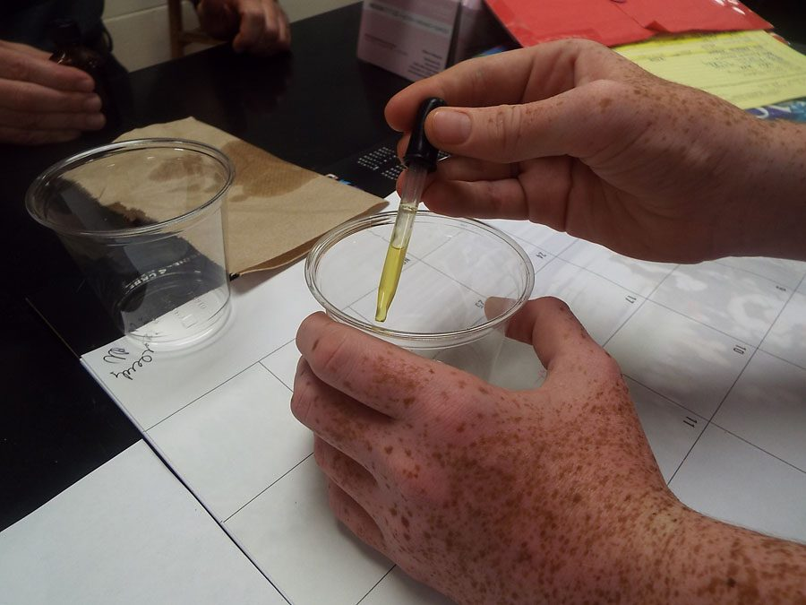 One of Mr. Schwartz's biology students working with the artificial stunk liquid.
