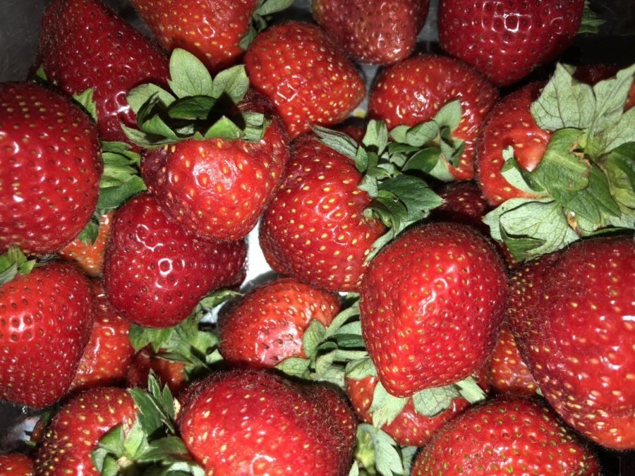 Snacks+like+strawberries+are+not+only+healthy+but+are+also+sweet.