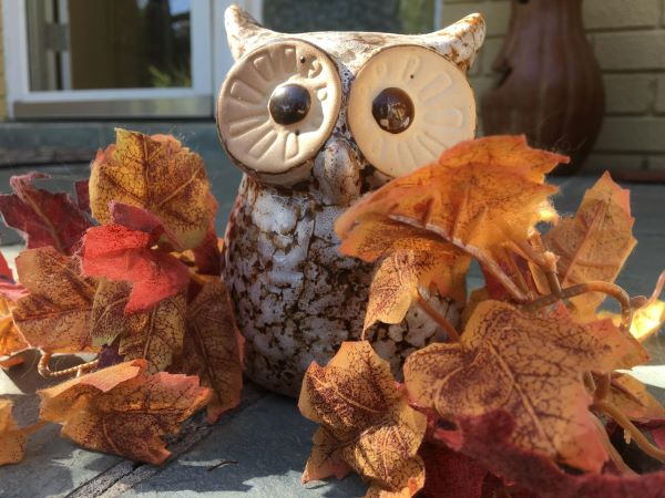 Fall is just around the corner, time to decorate!