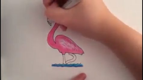Draw a flamingo, take a pic, and post!  You could also mail it to a grandparent!