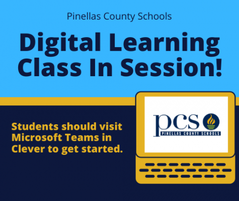 Schooling is online through the Pinellas County School Board.